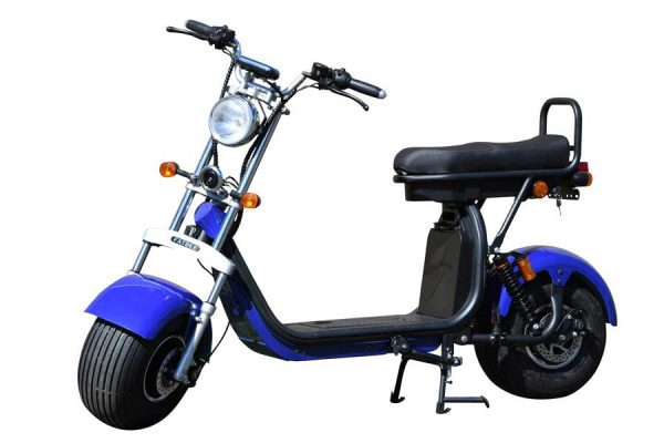 Fatbee H1 Scooter in Blue