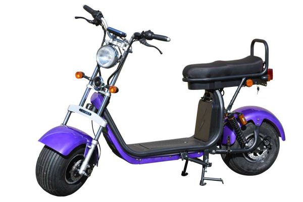 Fatbee H1 Scooter in Purple
